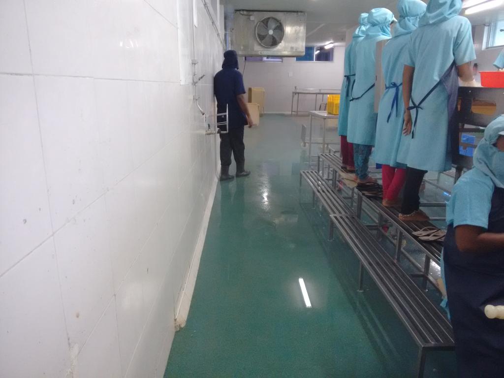 Silikal Floor - Fish Processing Floor